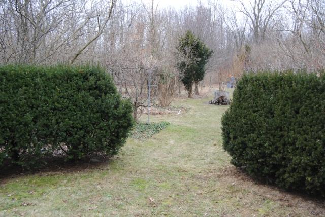 yew formal garden