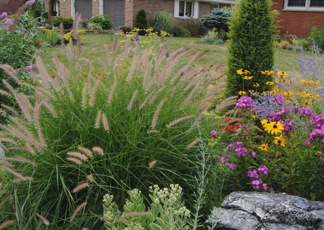 august perennial border