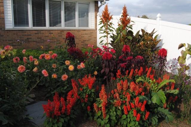 red themed tropical garden
