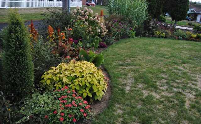 fall flower beds and grass