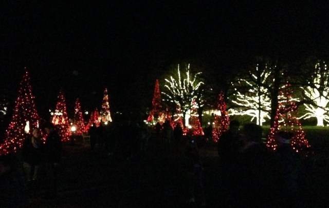 Longwood Lights
