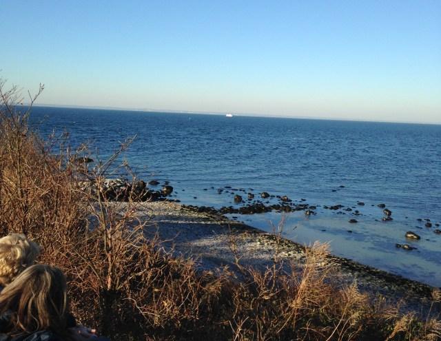 rocky winter beach on Long Island