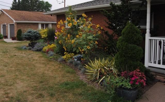midsummer abundance