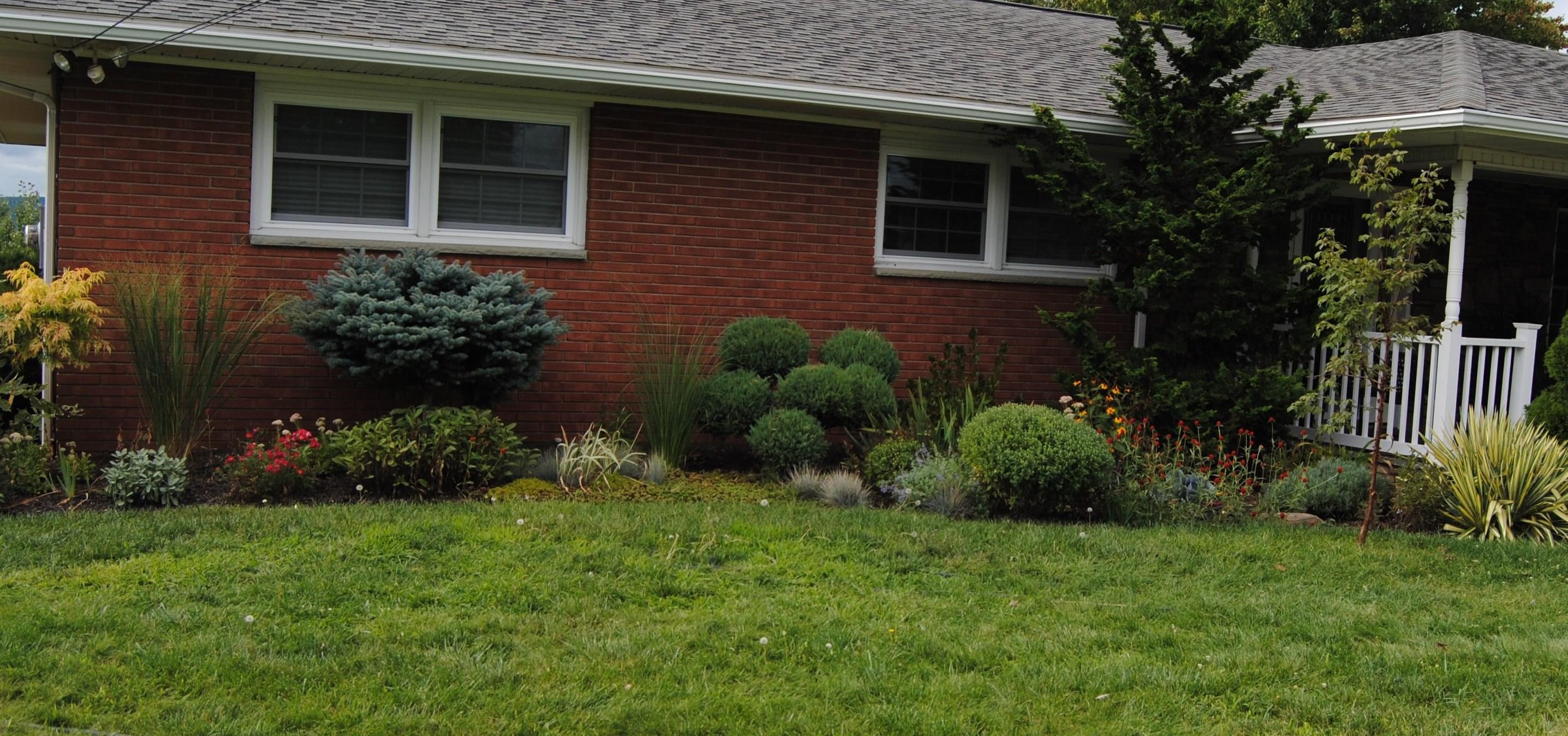 New flower bed sorta like suburbia for Juniper house garden design
