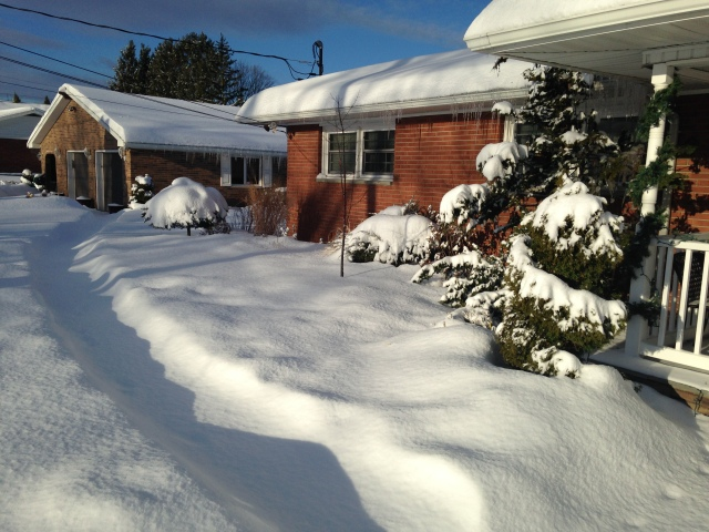 snowy front bed