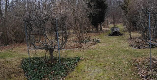 hitch lyman formal garden