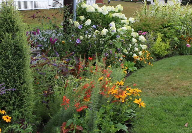front border with hydrangea