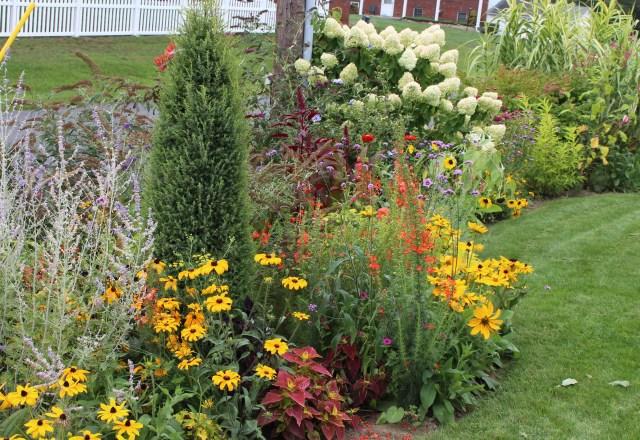 late season flower border