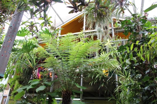 michael Bowell garden