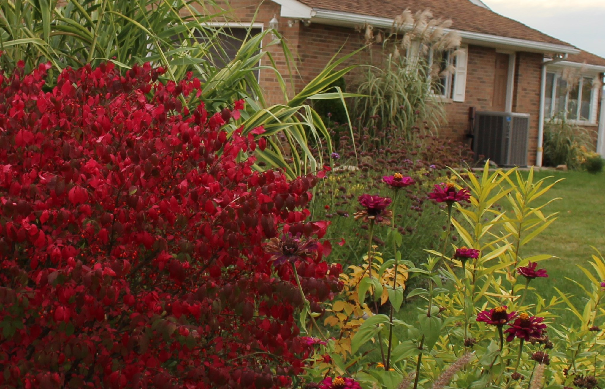 GB Foliage Day- October Highlights « sorta like suburbia