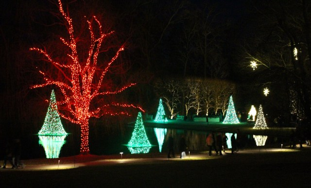 outdoor Christmas lights at Longwood