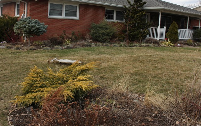 yard cleanup perennial beds
