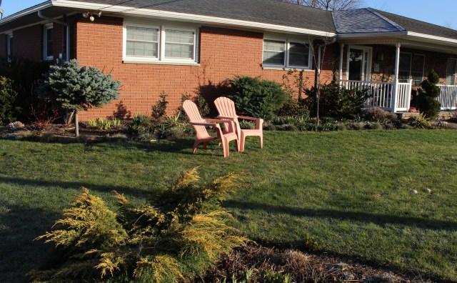 front yard garden cleanup