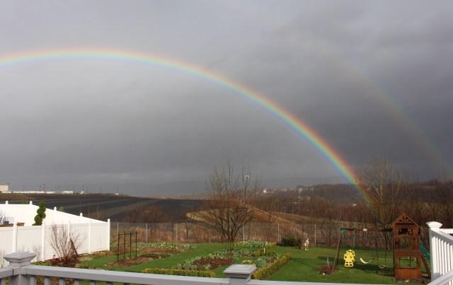 double rainbow over the garden