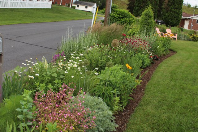 June perennial border