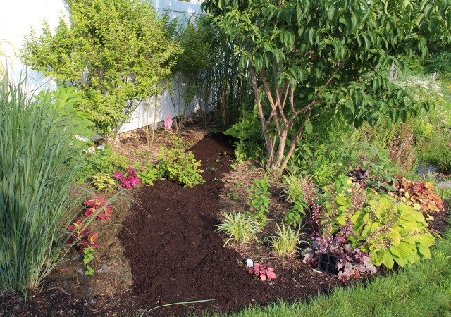 a new path into the flower beds