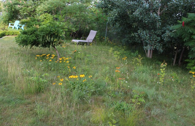seating in the meadow garden