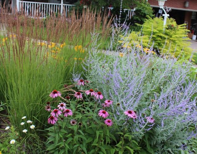 Oehme, van Sweden inspired planting