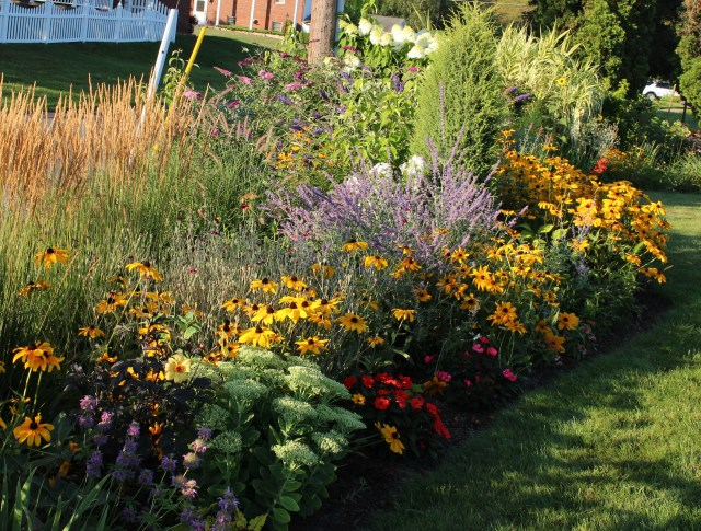 august flower border