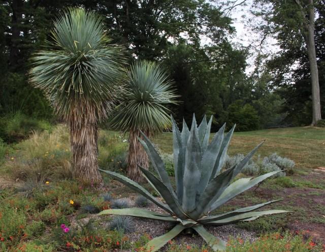 chanticleer gravel garden