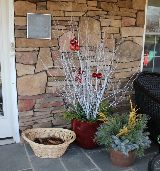 home grown winter decorations