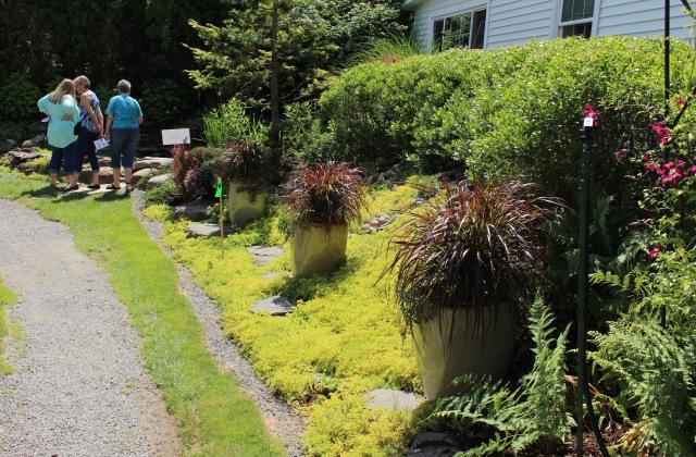 back mountain bloomers garden tour