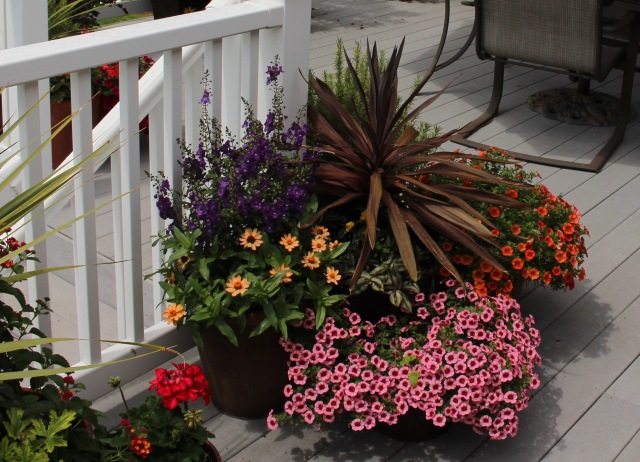 deck container planters