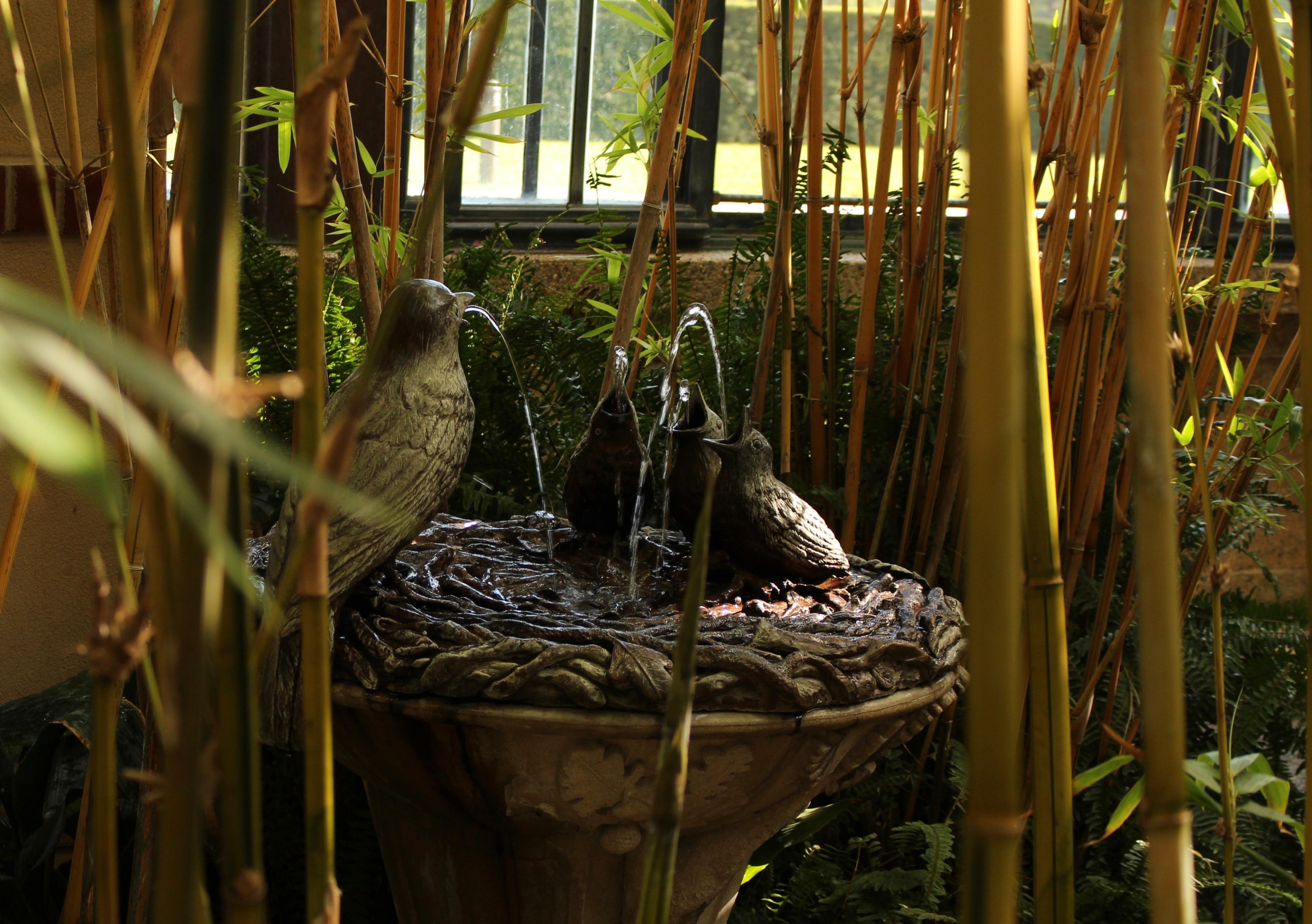 longwood gardens « sorta like suburbia