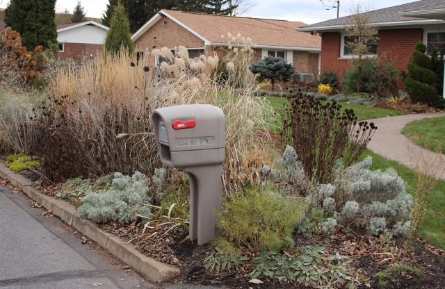 mailbox planting