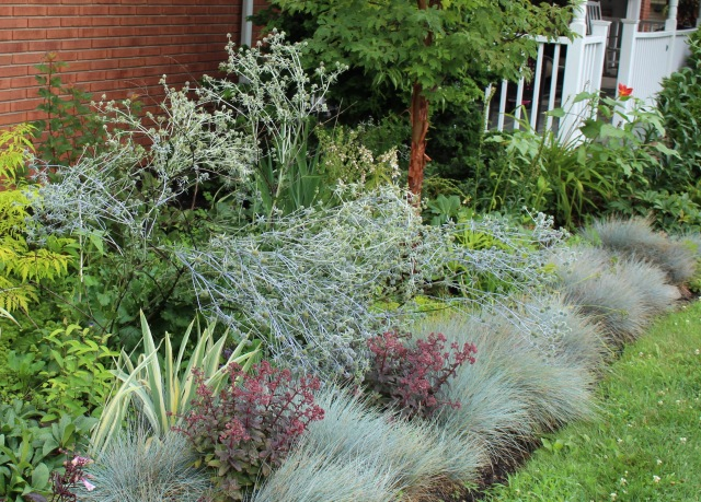 gray garden