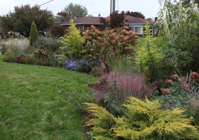 front border autumn