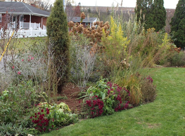 leaf mulch perennial bed