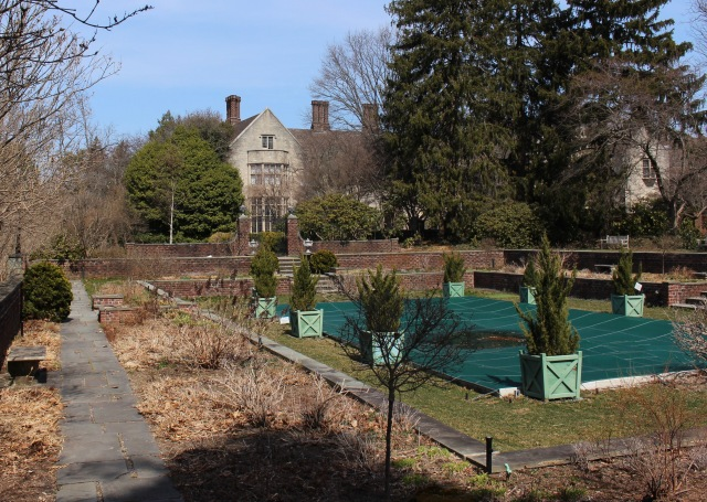 planting fields pool