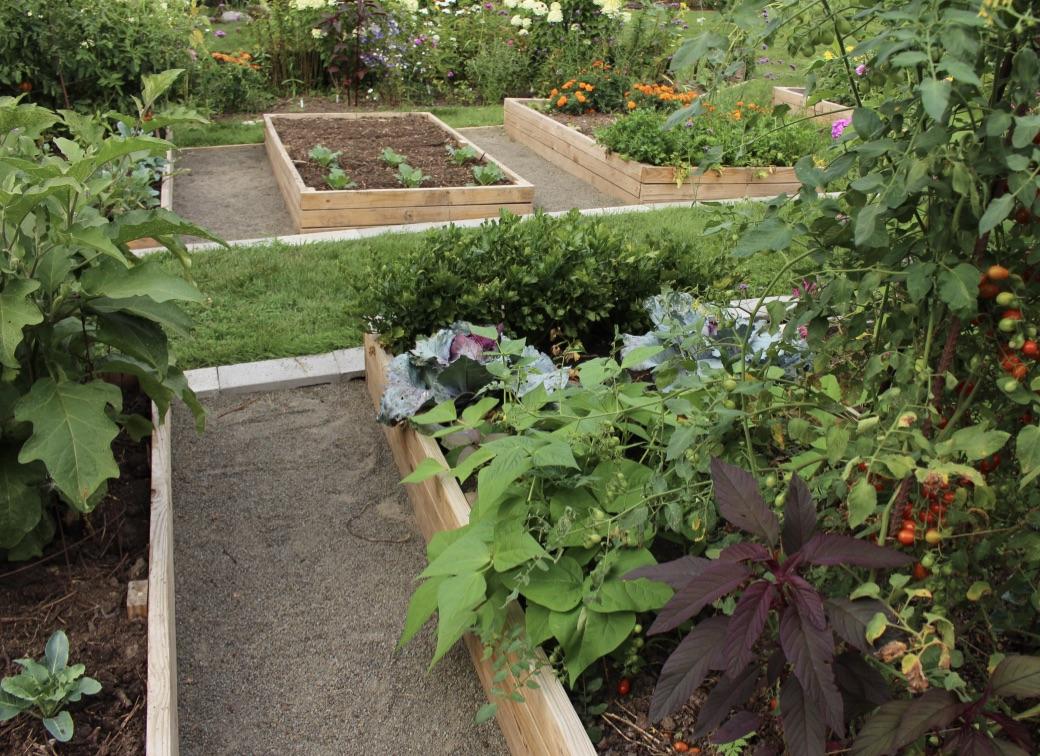 vegetable garden paths
