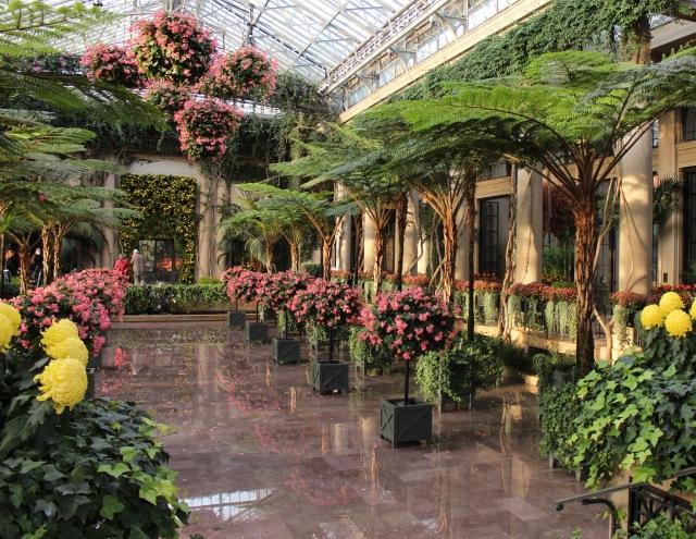 longwood fern conservatory