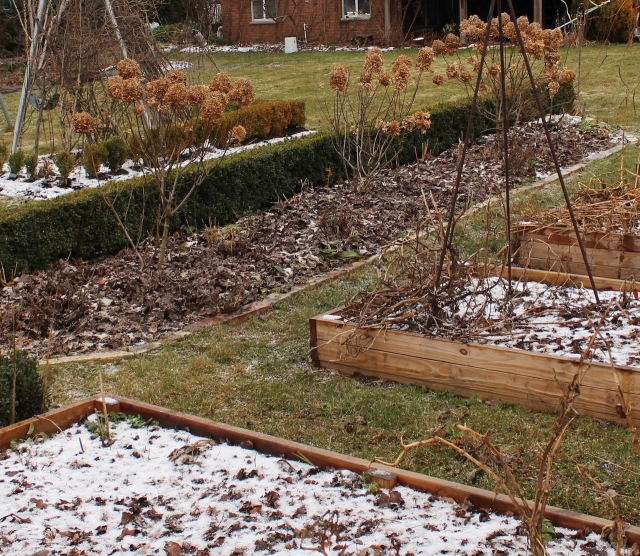 mulched vegetable beds