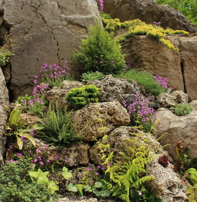 ithaca rock garden