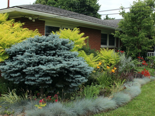 foundation perennial bed