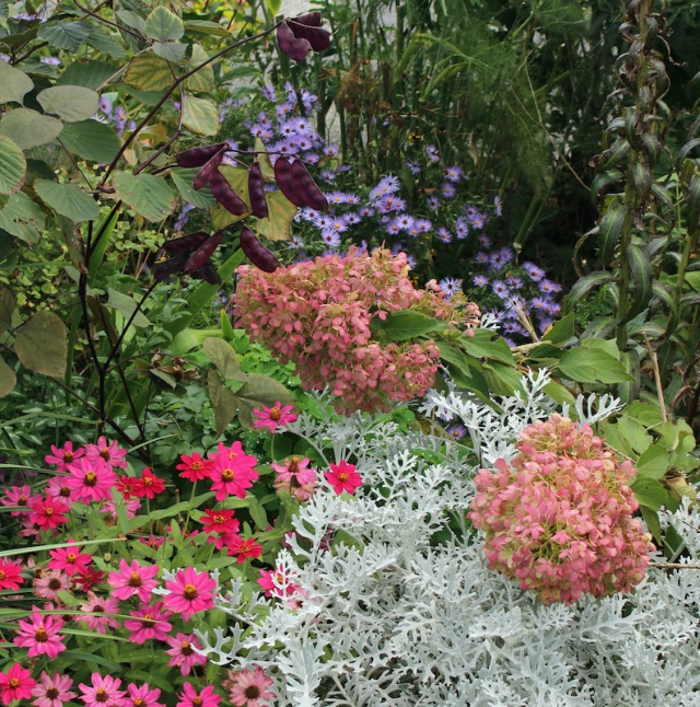 autumn perennial border